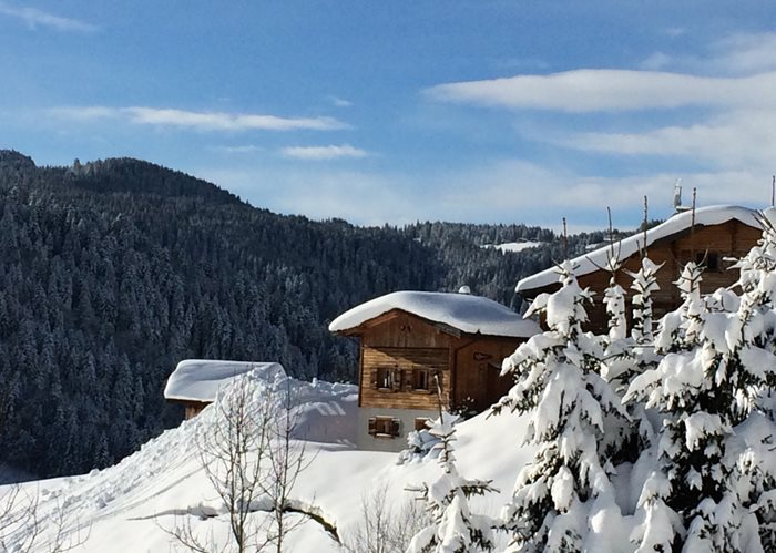 Megeve Catered Chalet and Apartment Accommodation