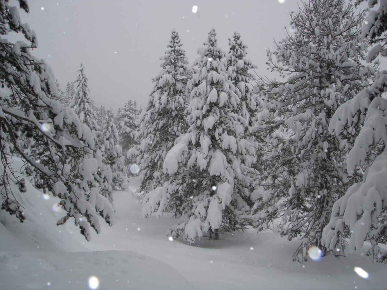 andorra-off-piste-skiing
